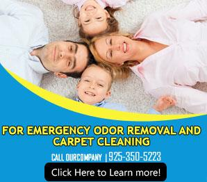 Blog | Don't Go To Just Any Sofa Cleaning Service